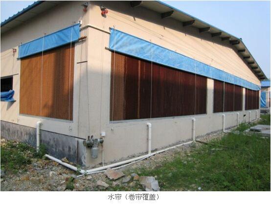 规模化猪场的通风系统对于猪场生